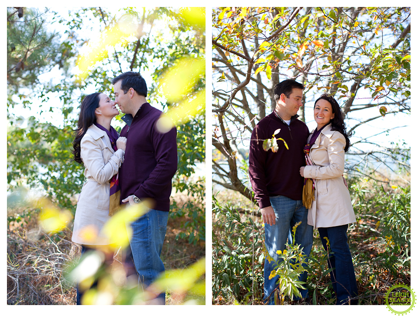 Best of 2011 Engagements