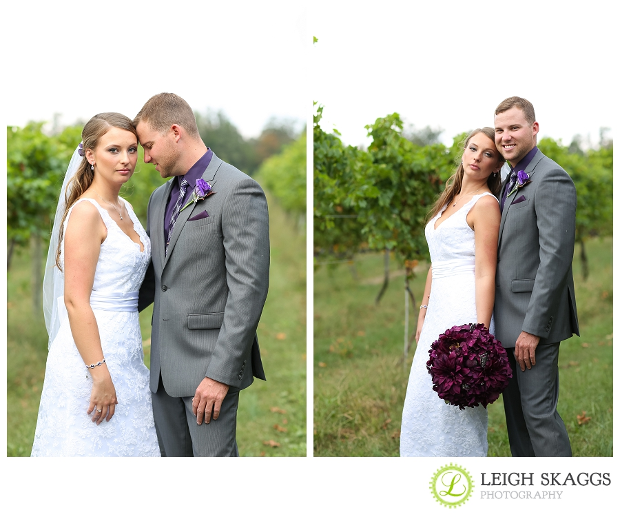 Best of 2012 Weddings and Engagements
