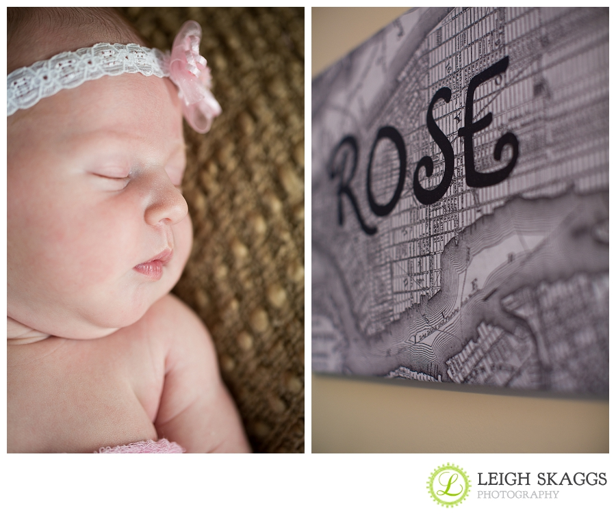 Norfolk Virginia Newborn Photographer ~Welcome to the World, Rose~
