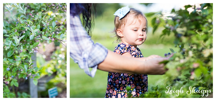 Norfolk Virginia Family Portrait Photographer  Jo is Growing so FAST