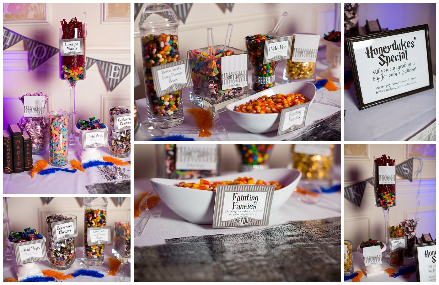 Lorraine & Jeremy are Married!  Their Disney and Harry Potter themed wedding sneak peek at the Founders Inn!!