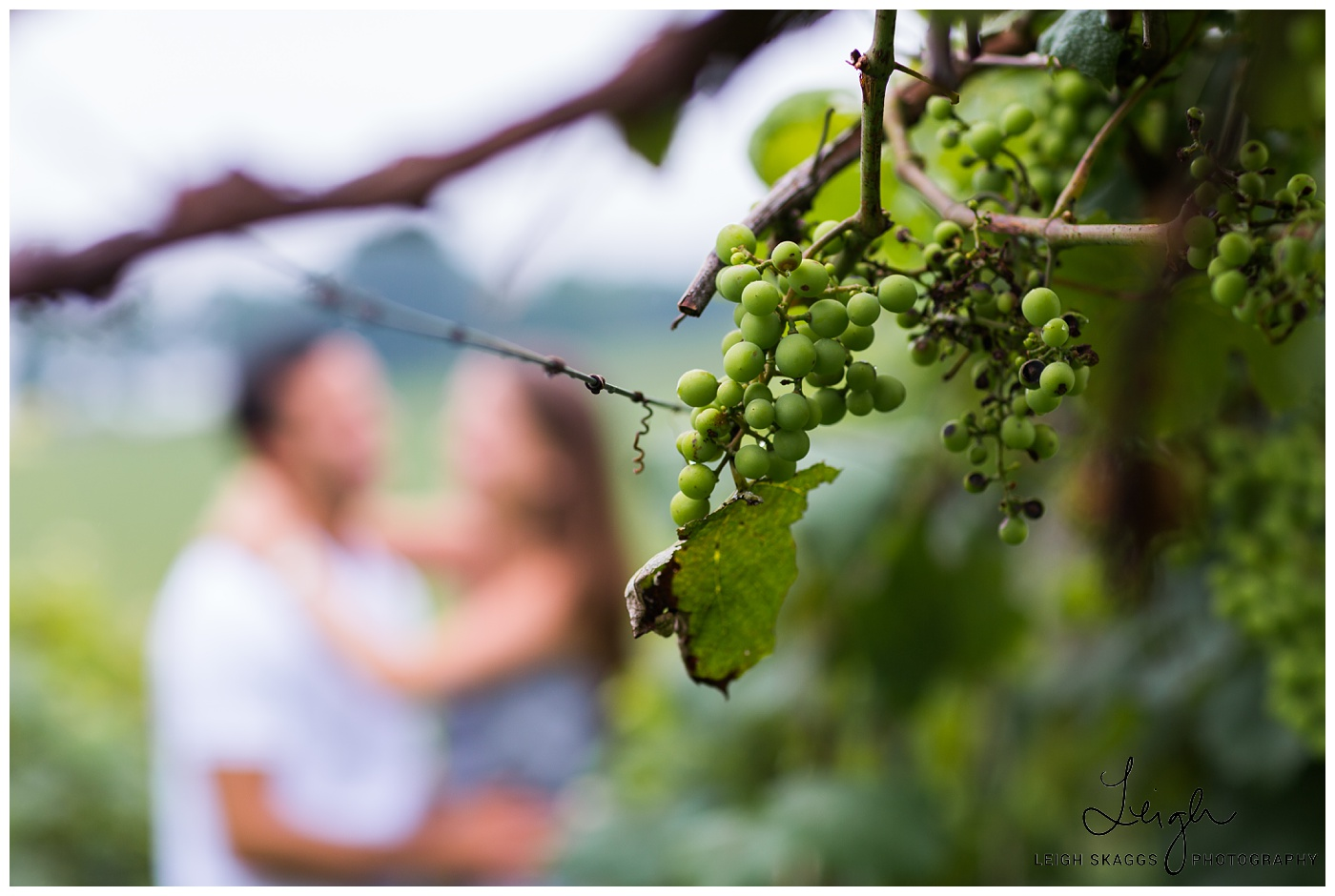 Stephanie & Ryan | Virginia Tech and Beliveau Estate Winery Engagement