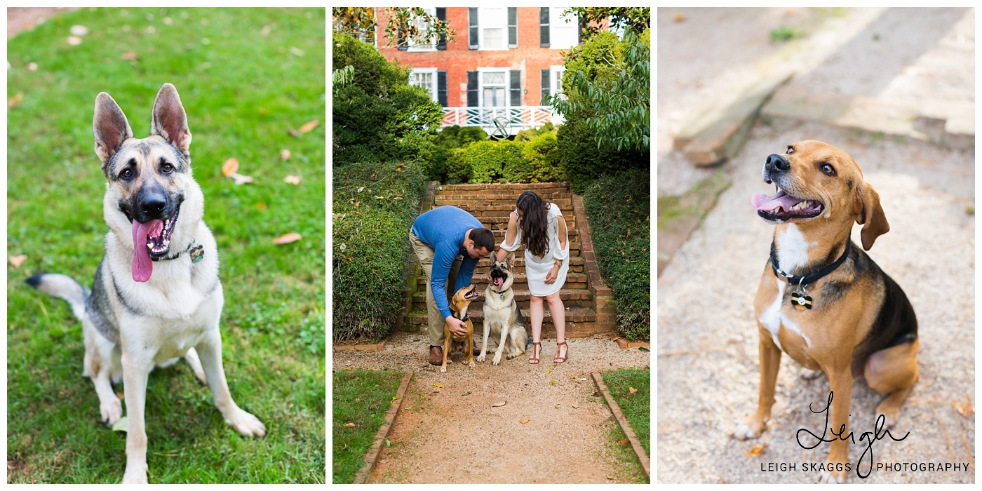 What do I need to know about my Engagement session? | Education Series