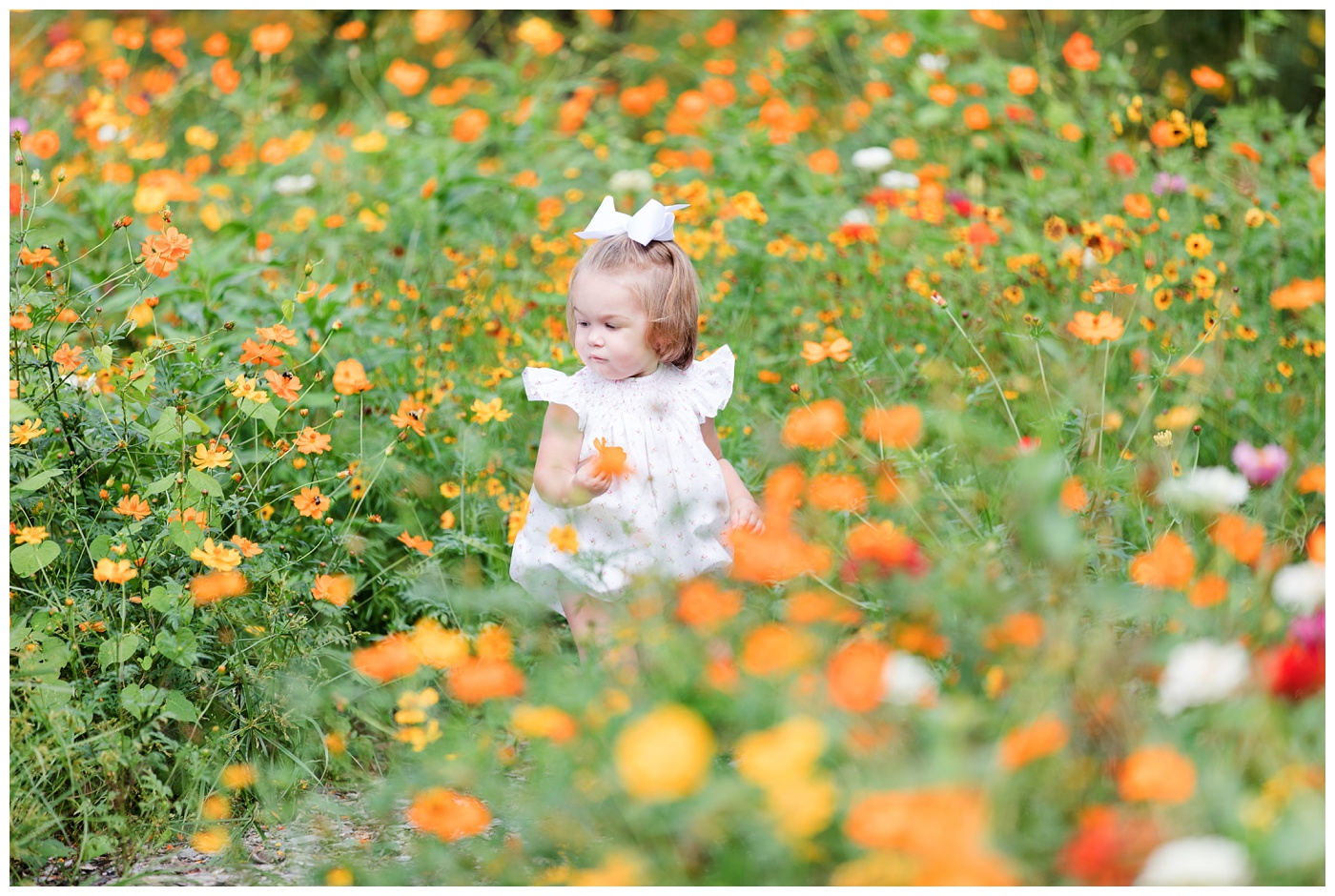 Tori in the Wildflowers | Childrens Portrait Photographer