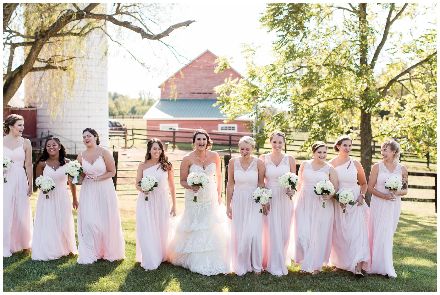 Erin & Lloyd | Wolf Trap Farm Wedding